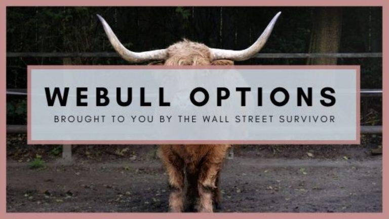 Webull Options