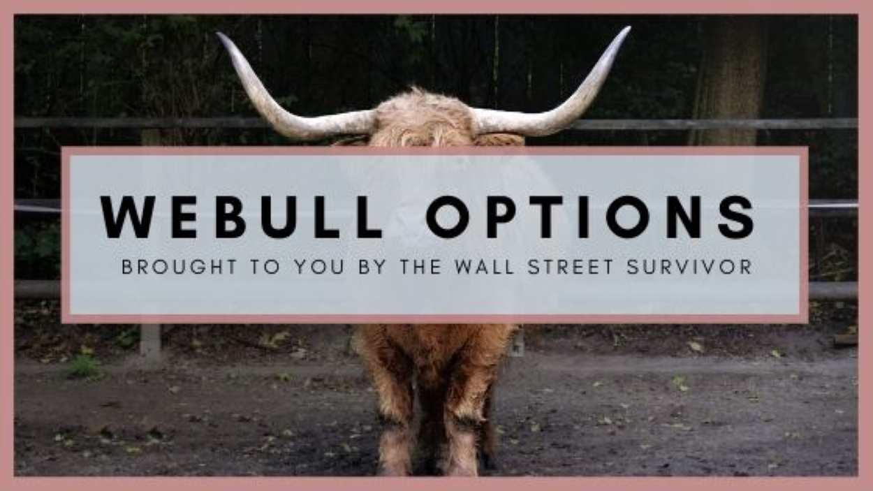Webull Options